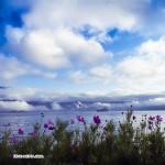 秀美泸沽湖(张锋摄影作品)